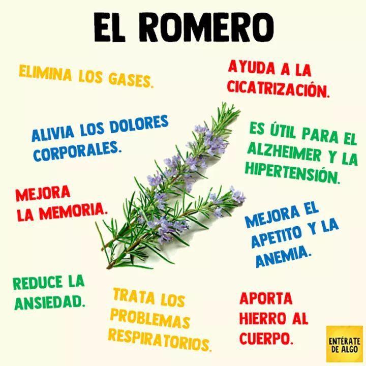 El Romero y sus propiedades