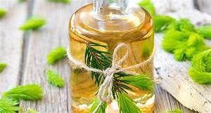 El aceite de árbol de te mejora la circulación sanguínea, eliminando toxinas y ayuda al crecimiento del cabello