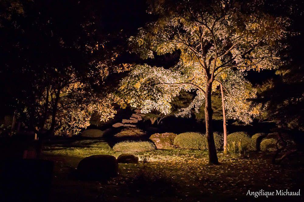 Une soirée d'été au Parc Oriental de Maulévrier
