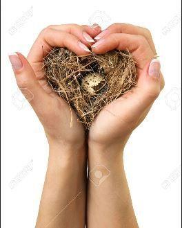 Tes mains d'oiseau . Florence Jeryas