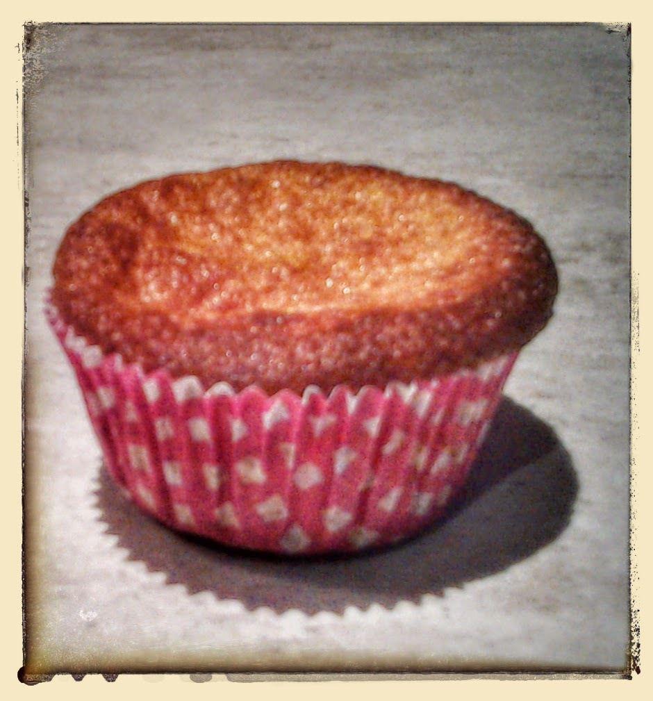 Muffin au melon et au miel au thermomix
