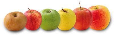 Recap recettes avec des pommes