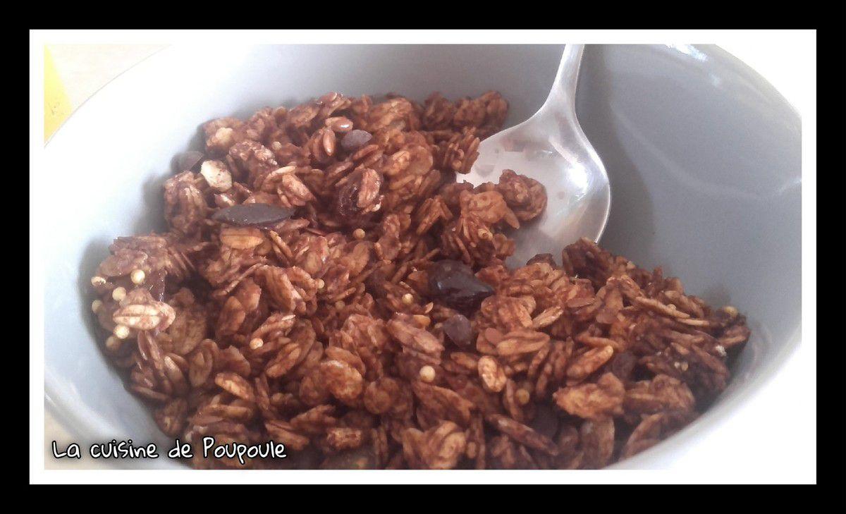 Granola aux flocons d'avoine aux chocolats, graines et raisins sec (sans gluten)