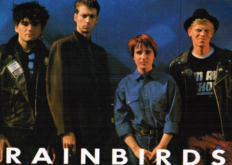 Les oiseaux de pluie...