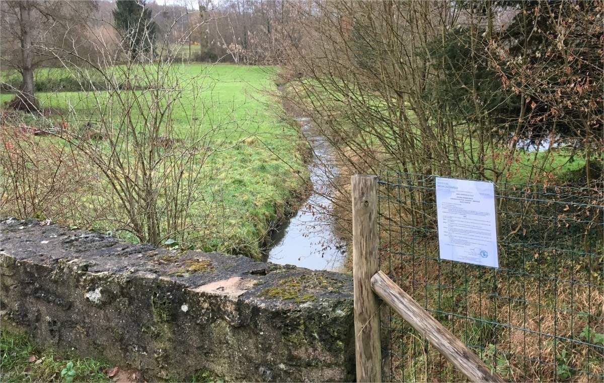 Arrêté A17-12.16 portant interdiction de consommation d'eau, de baignade et d'abreuvage dans le Rhodon !
