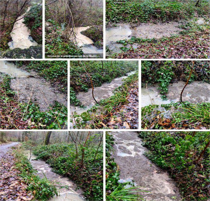 """Encore """"une énième"""" vague de pollution dans son site classé de la vallée du Rhodon du Parc Naturel Régional de la Haute Vallée de Chevreuse. Photos en forêt de Trappes de Philippe Ovieve du 1er février."""
