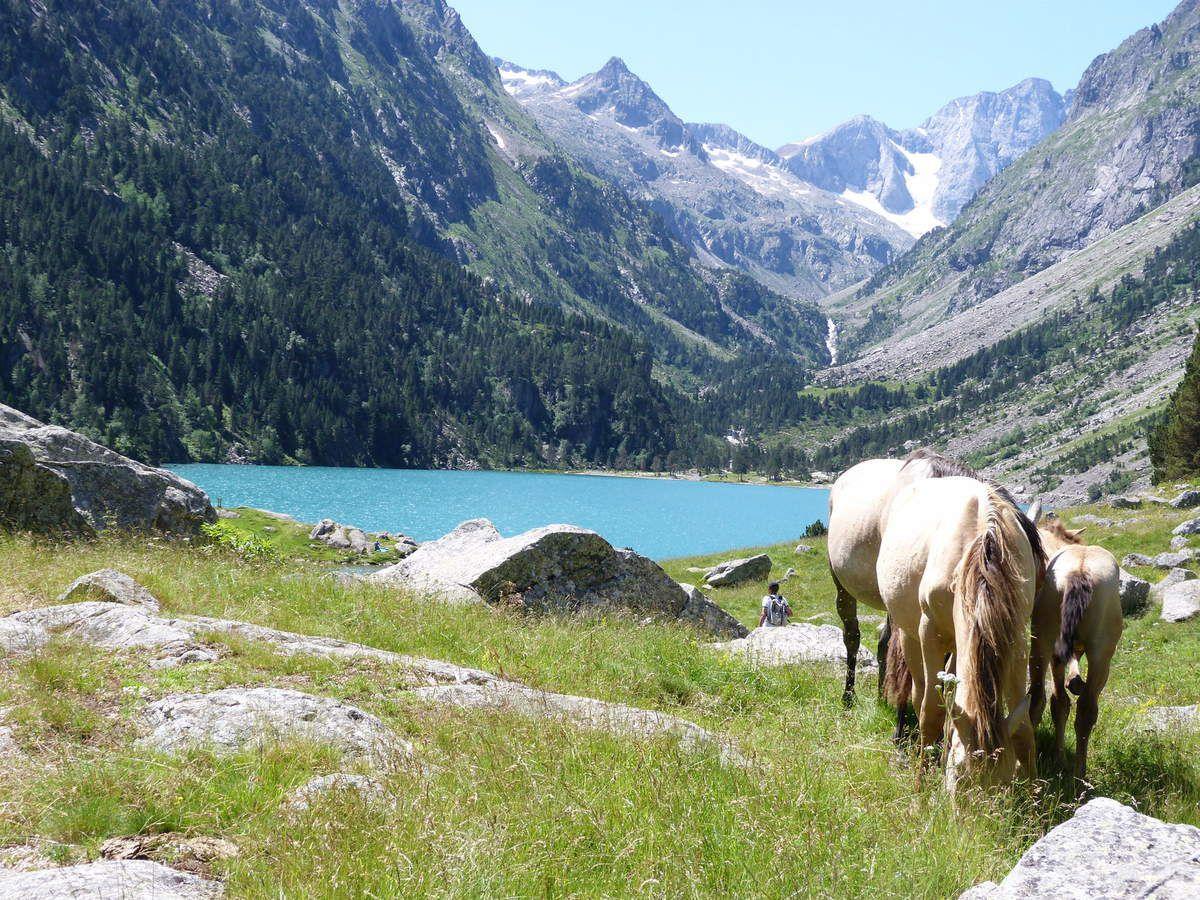 Dans les Hautes Pyrénées, Cauterets et le Pont d' Espagne, J4