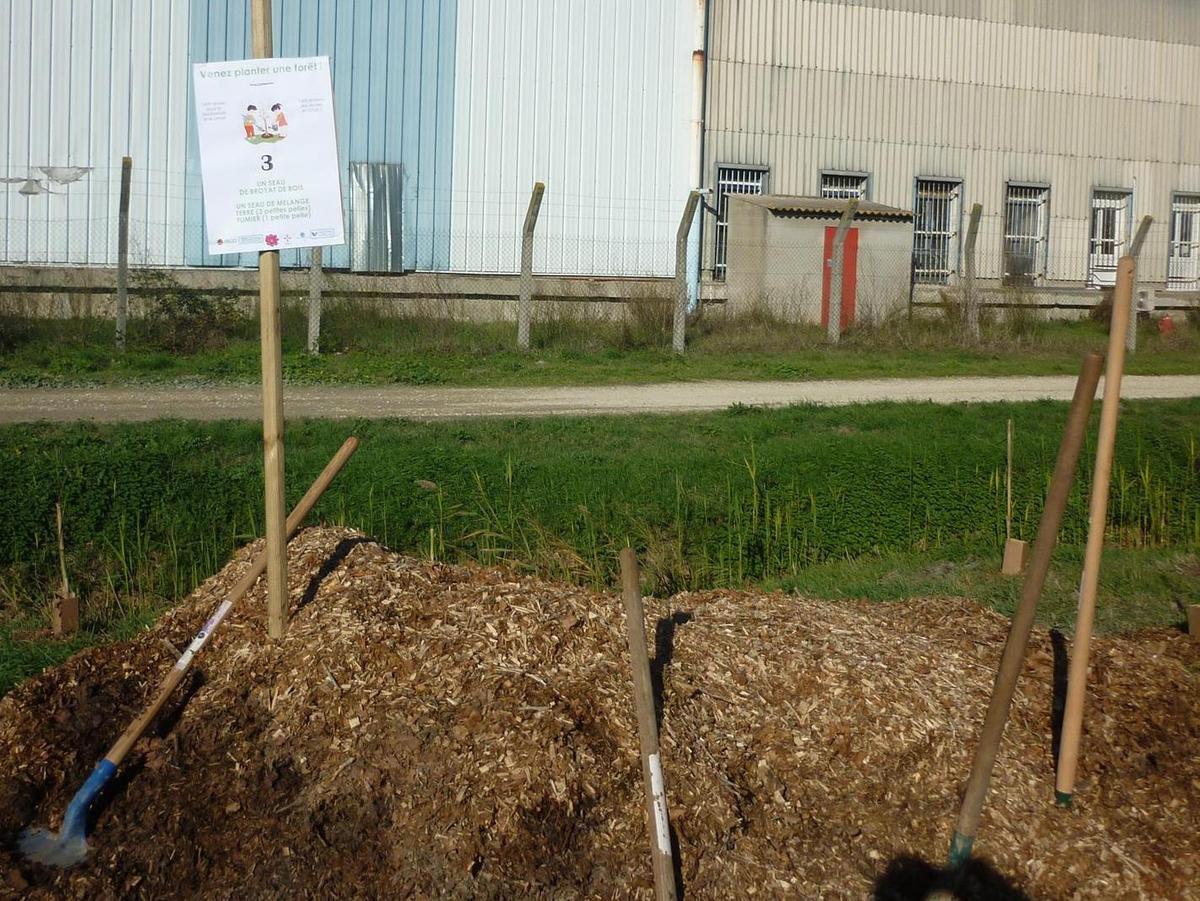 20191208 AaF Planter une Forêt