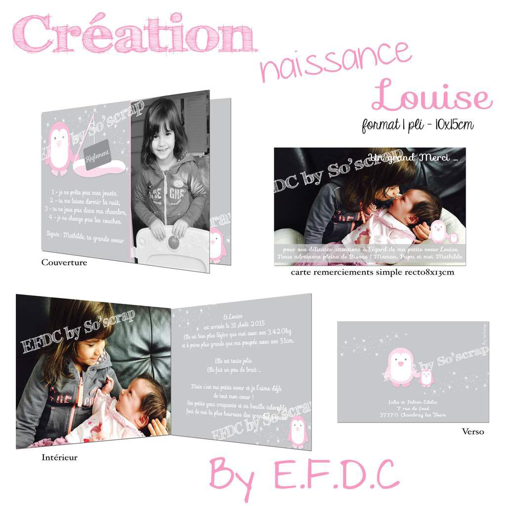 faire part naissance, création unique et sur mesure, thème pingouin, rose et gris, texte et photos à personnaliser, scrapbooking digital, 1 pli 10x15cm + carte de remerciements assortie avec photo simple recto 8x13cm