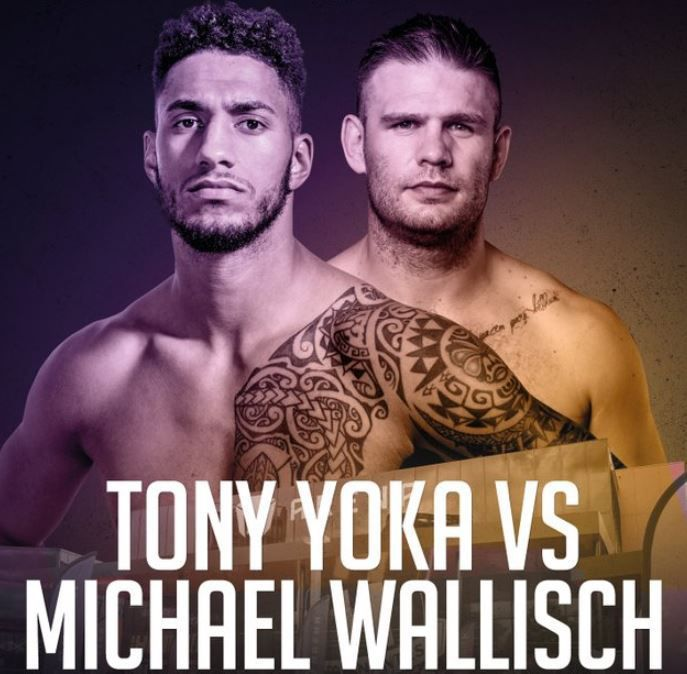 [Boxe] Tony Yoka vs. Michaël Wallish ce samedi sur Canal Plus !