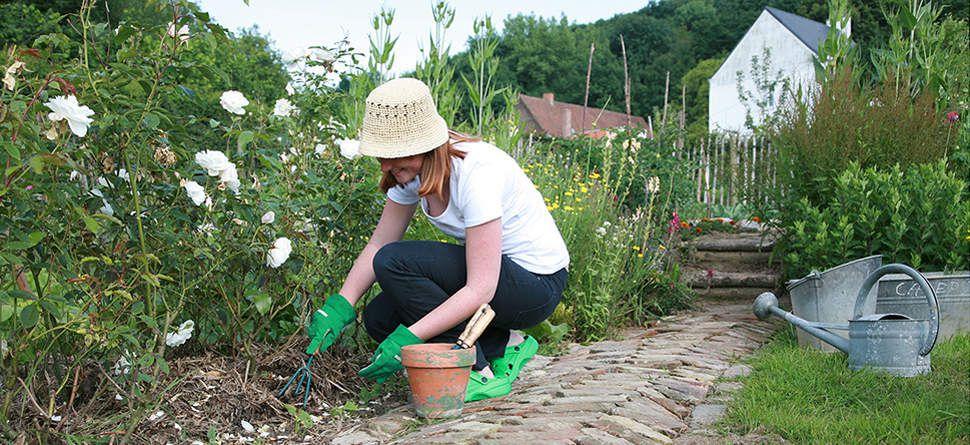 Retrait de la vente en libre-service des pesticides : les jardineries se mobilisent