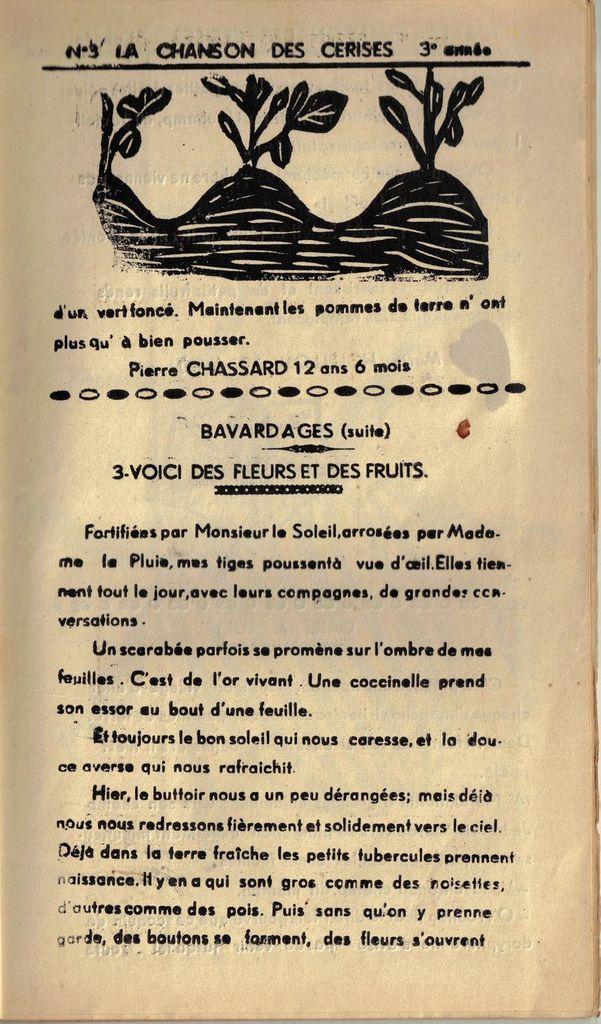 """Le Journal """" La Chanson des Cerises """""""