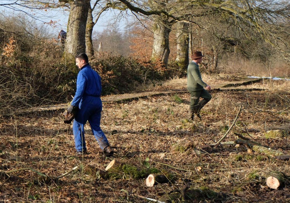 L'Eaudici organise un chantier jeunes sur la Zone humide de l'étang Lallemand
