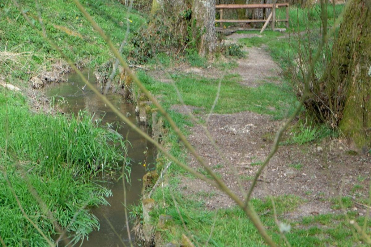Un ruisseau et des hommes