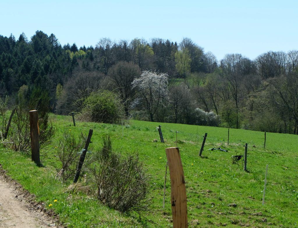 En suivant la route de Bains les Bains