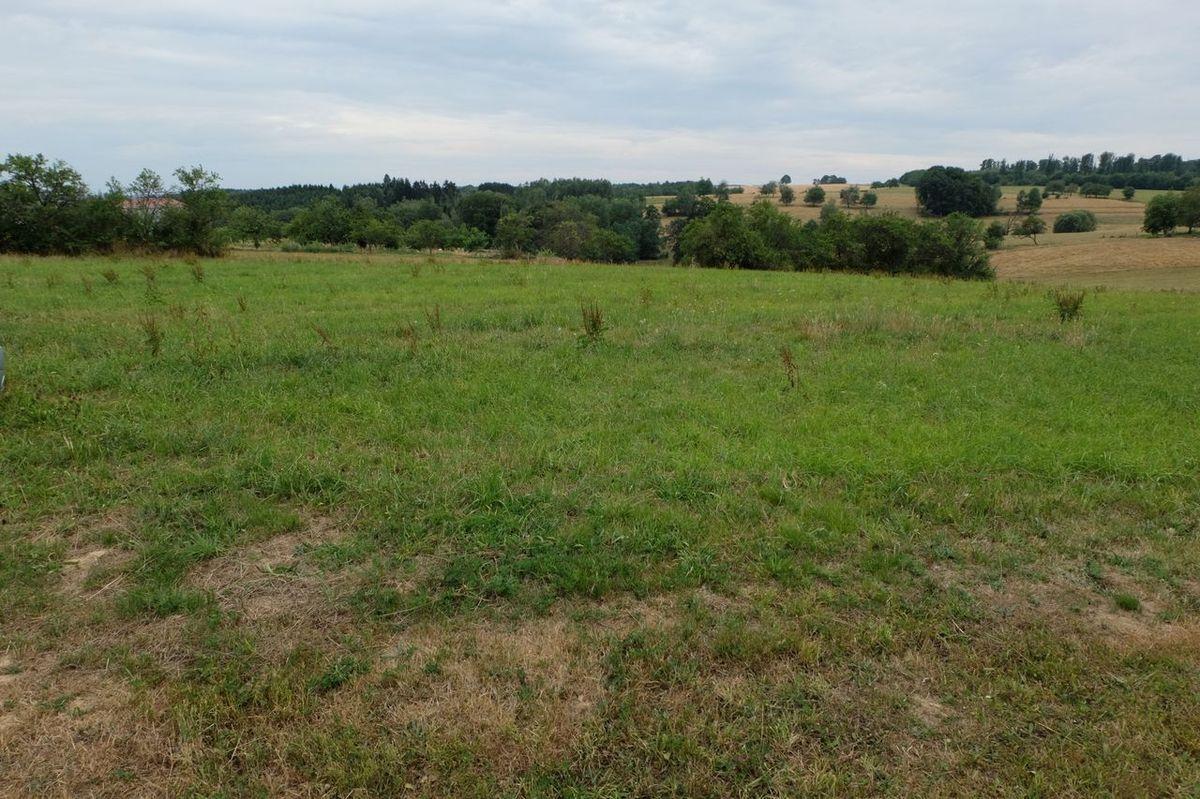 Les prisonniers étaient d'abord parqués dans ce champ en face du Mémorial.