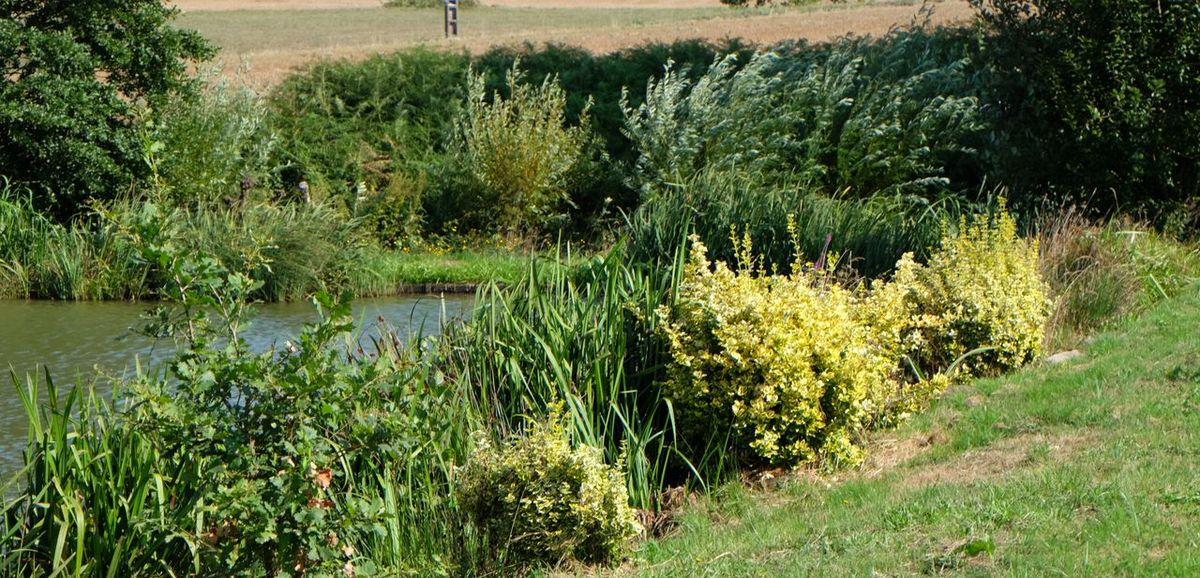 Le jardin de Fernand, la légende