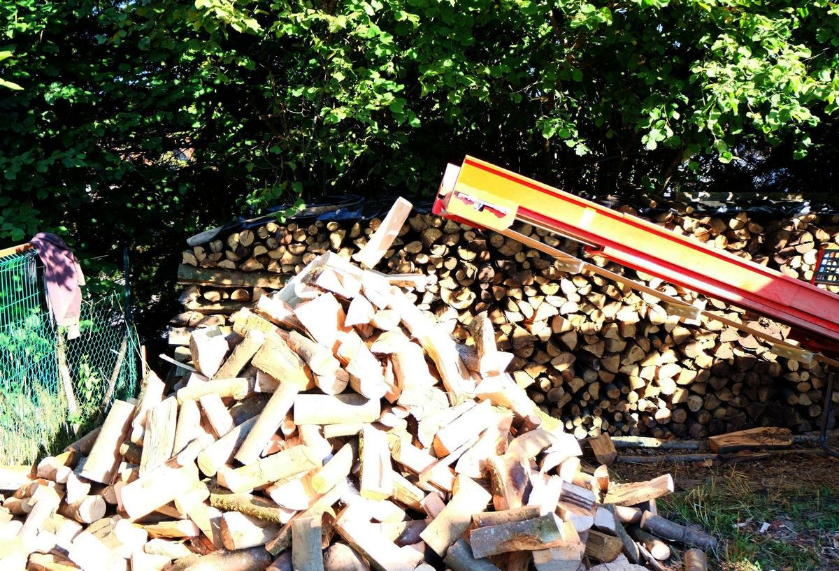 Sciage de bois