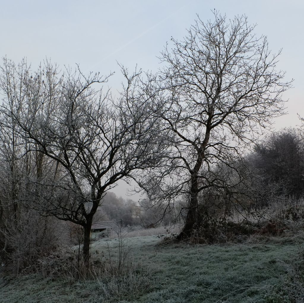 Voici l'hiver
