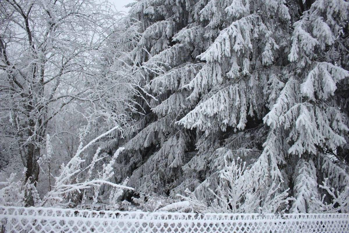 Neige à la Grande Fosse. Photos Sylvia von Kaenel