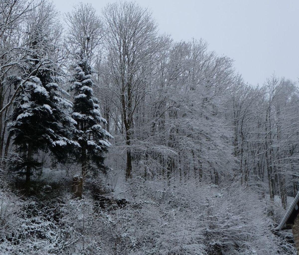 Fontenoy le Château sous la neige