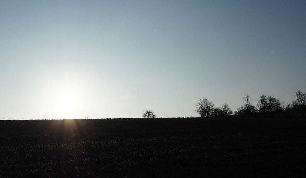 Le printemps à la Basse des Orges