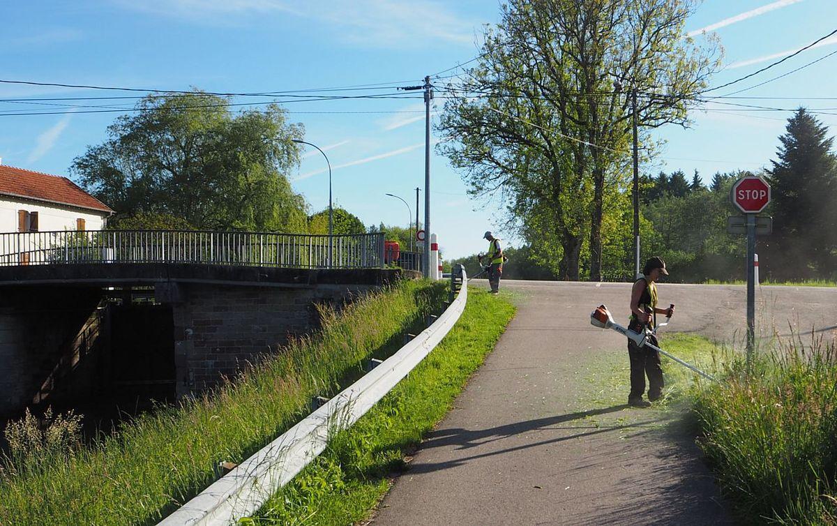 Premier fauchage des talus le long du canal de l'Est par le chantier d'insertion