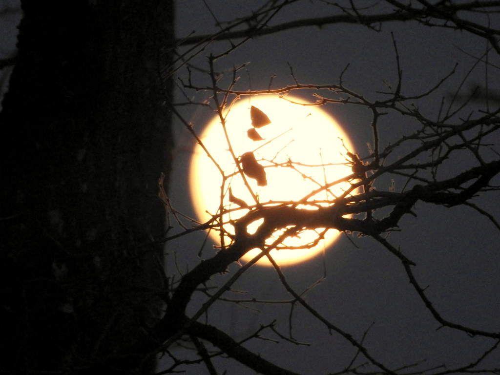 Pleine lune. Photo Evelyne