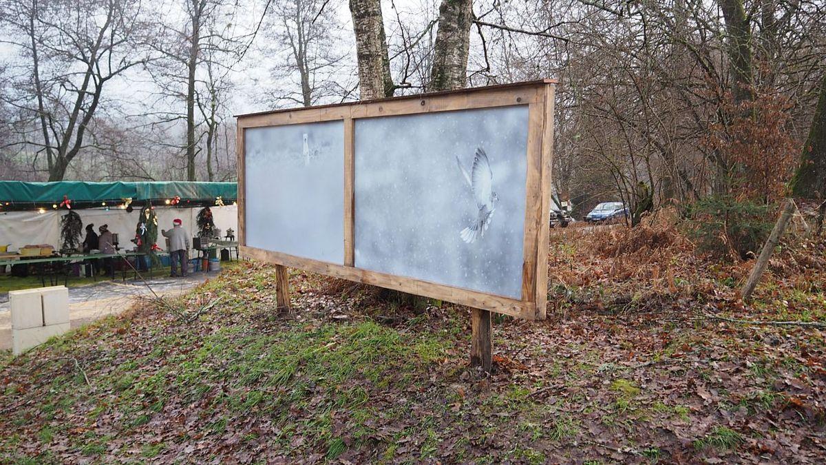 L'hermine  a été photographiée à Chamagne, la tourterelle à Charmes à côté de la résidence de Vincent Munier.