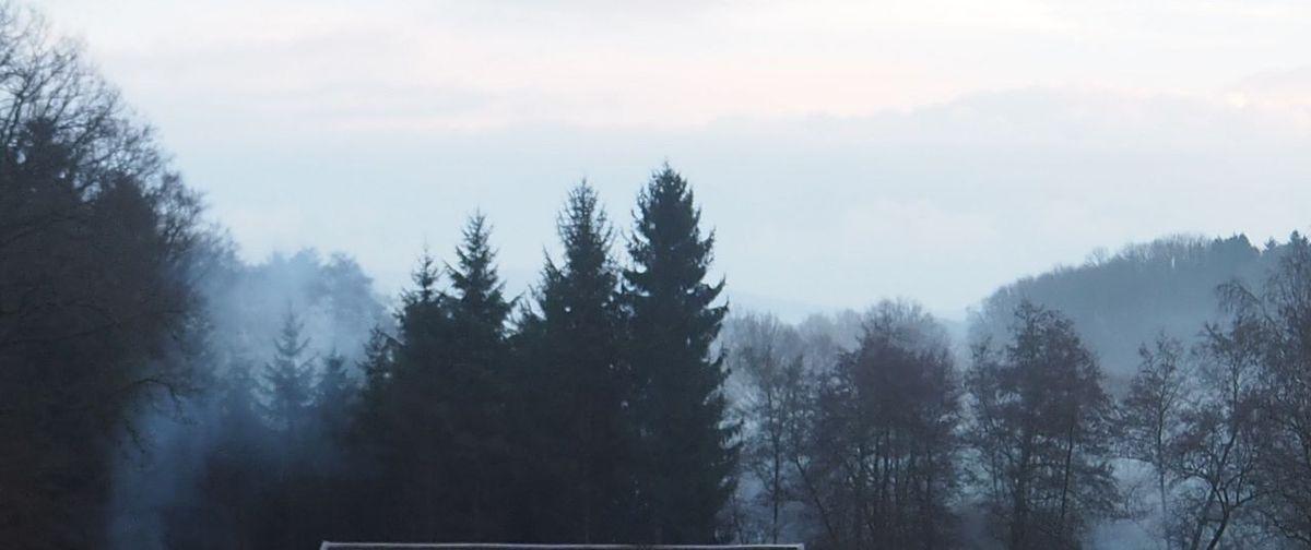 Site de l'Etang Lallemand. Les Hautes Vosges photographiées par Vincent Munier.