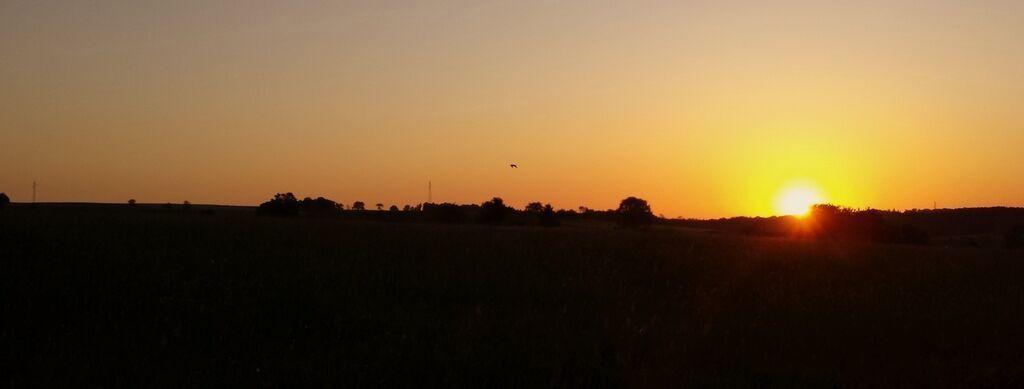 Lever du soleil sur Hautmougey. Photo Evelyne