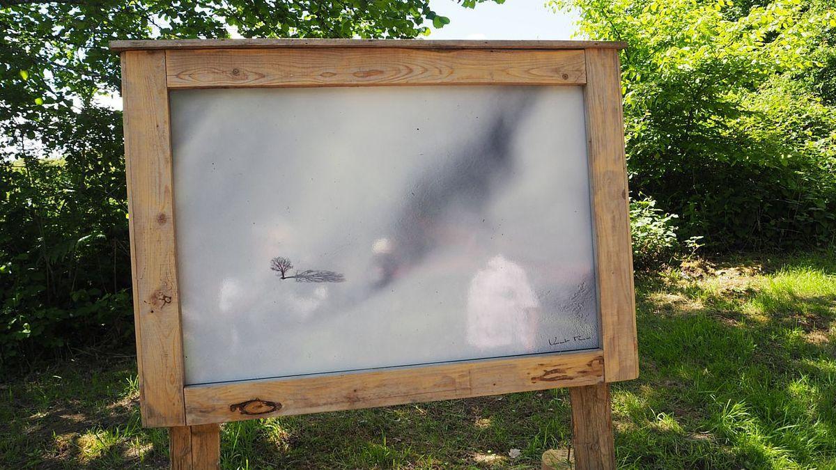 Exposition photos Vincent Munier