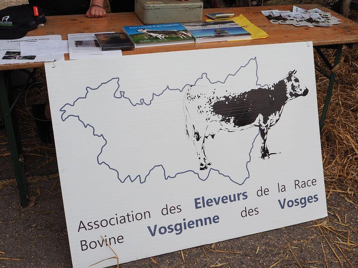 Comice agricole de Bains les Bains