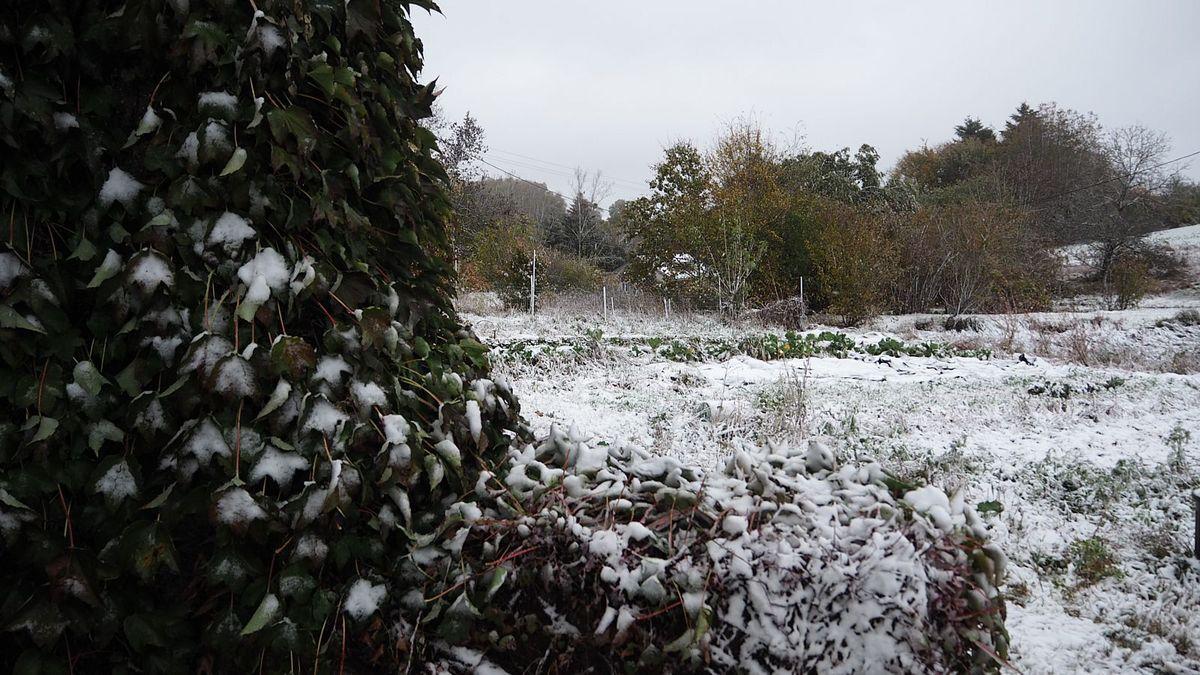 Neige à la Basse des Orges (Photos lesvoivres88240) - Neige à la Grande Fosse (Photos Sylvia Von Kaenel)