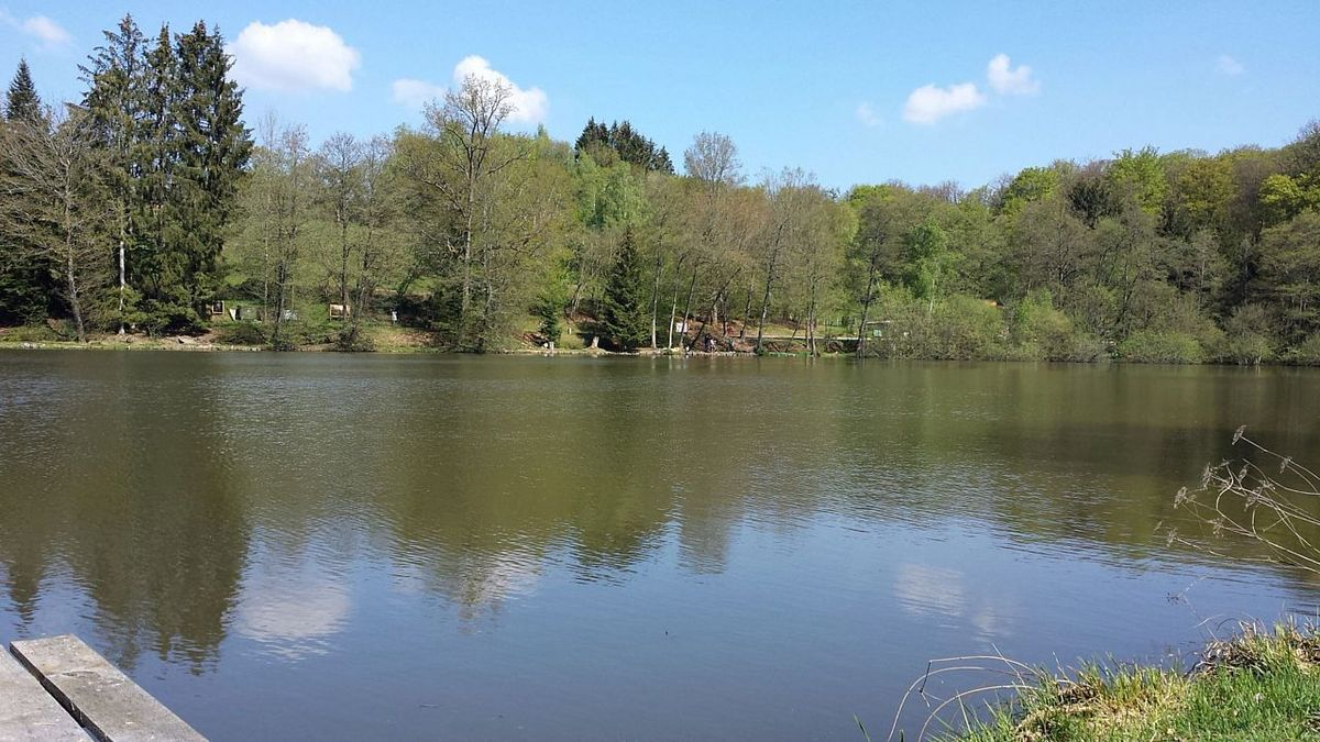 L'Eaudici / Odcvl organise une fête Nature et Pêche à l'Etang Lallemand