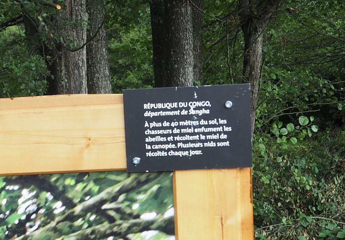 Les Sentiers Détournés : Eric Tourneret
