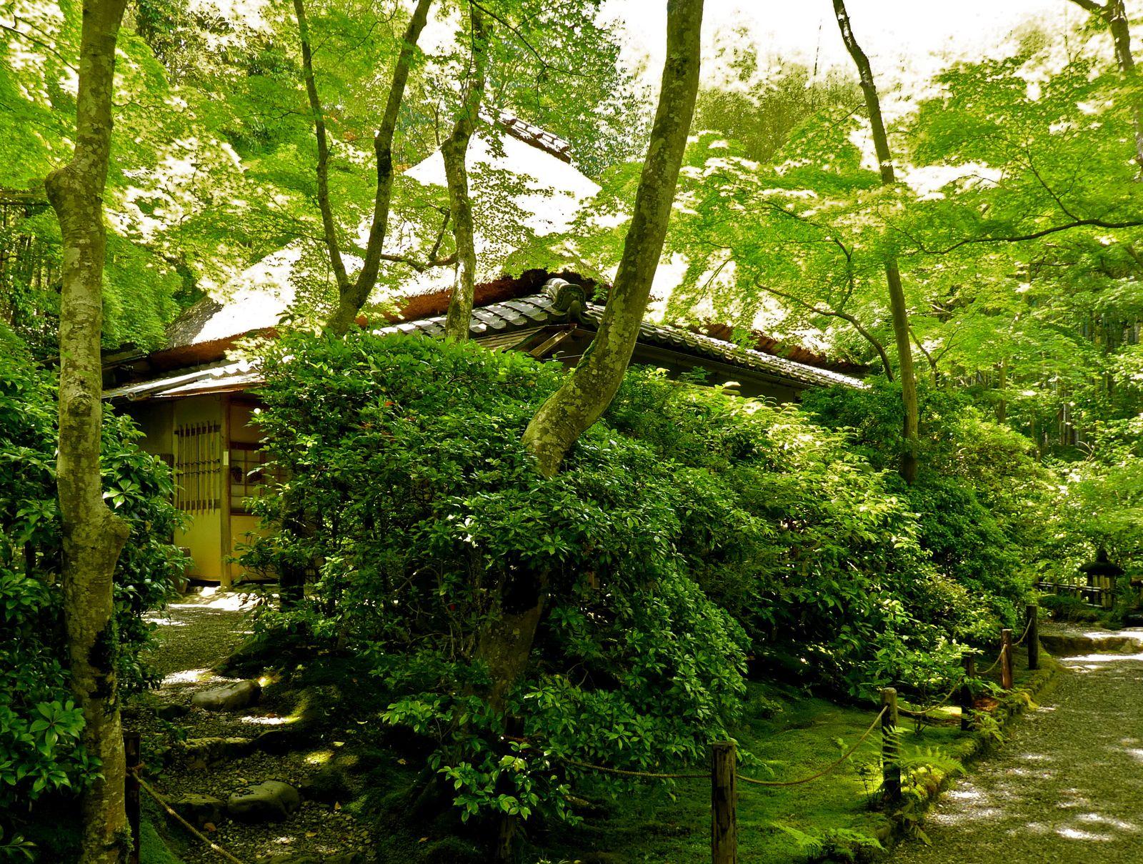 Kyôto: Arashiyama: Le Giô-ji 祇王寺, au magnifique jardin de mousses