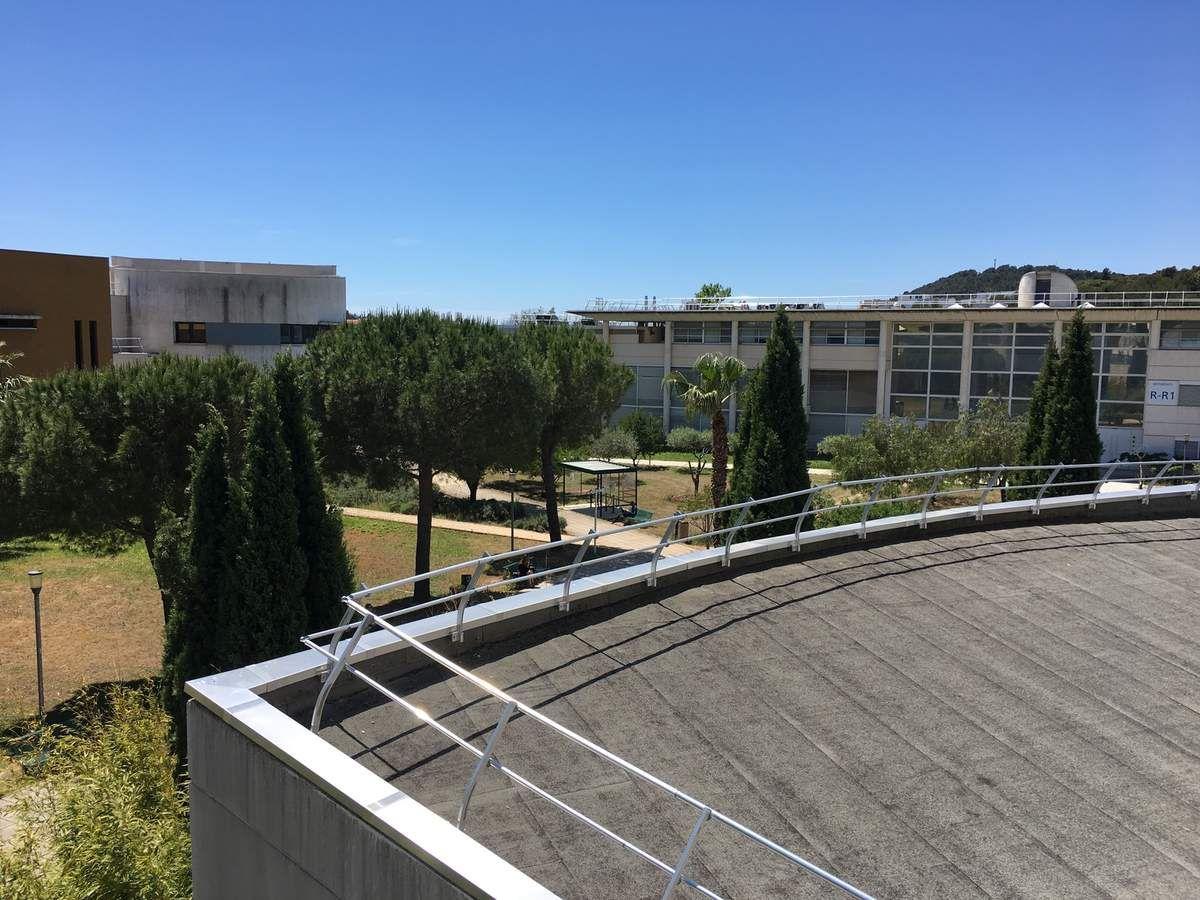 Thomas ROGER DEVISMES - Université de Toulon - Campus de La Garde - Photographie prise depuis le balcon du Bâtiment Y (UFR Lettres, Langues et Sciences Humaines) - Ci-devant, en face, Bâtiments K et R (Laboratoire IM2NP) - 29 mai 2019