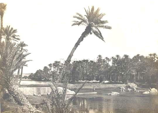 Le génocide de Laghouat 04 décembre  1852.1852.