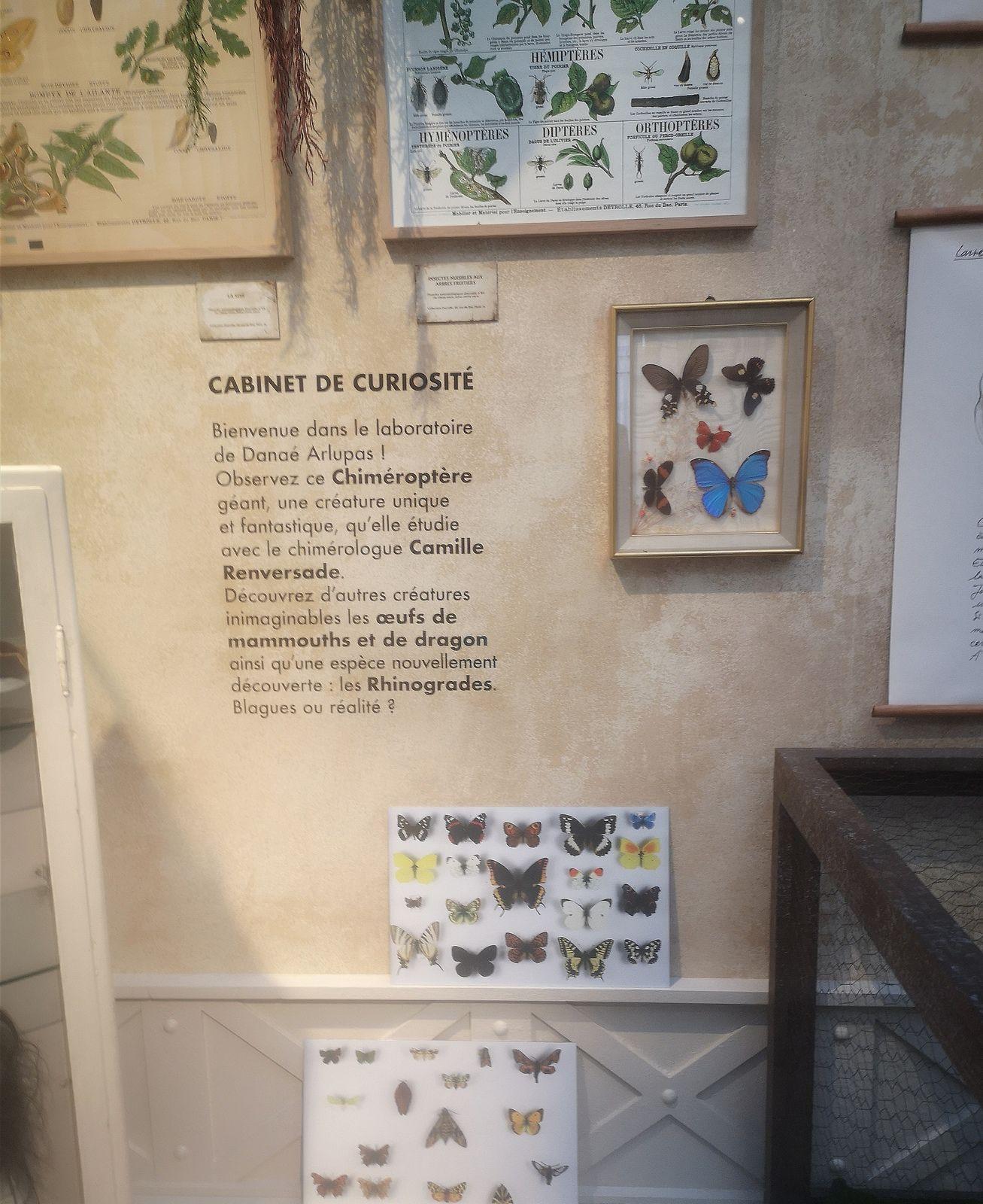 Araignées, lucioles et papillons au Musée en herbe