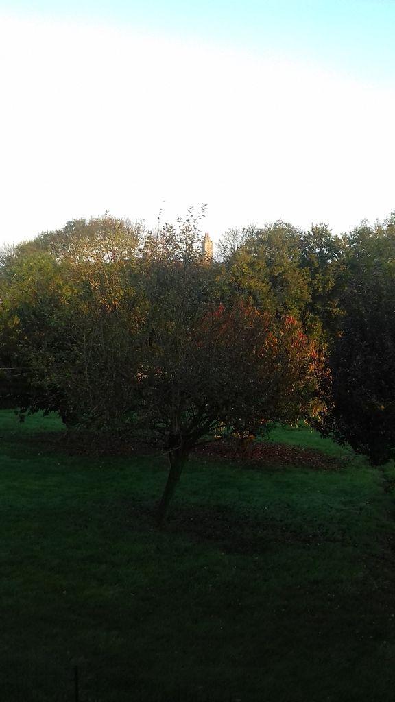 Normandie en novembre 2017