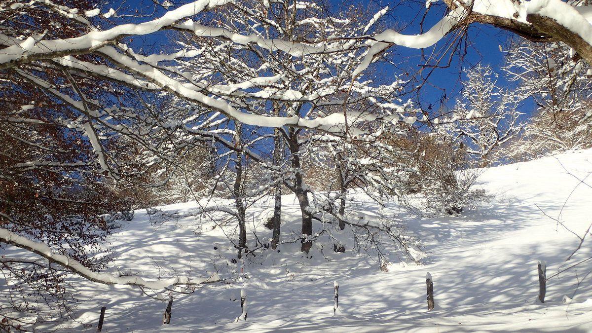 Une belle matinée d'approche dans la neige, 3 décembre 2017
