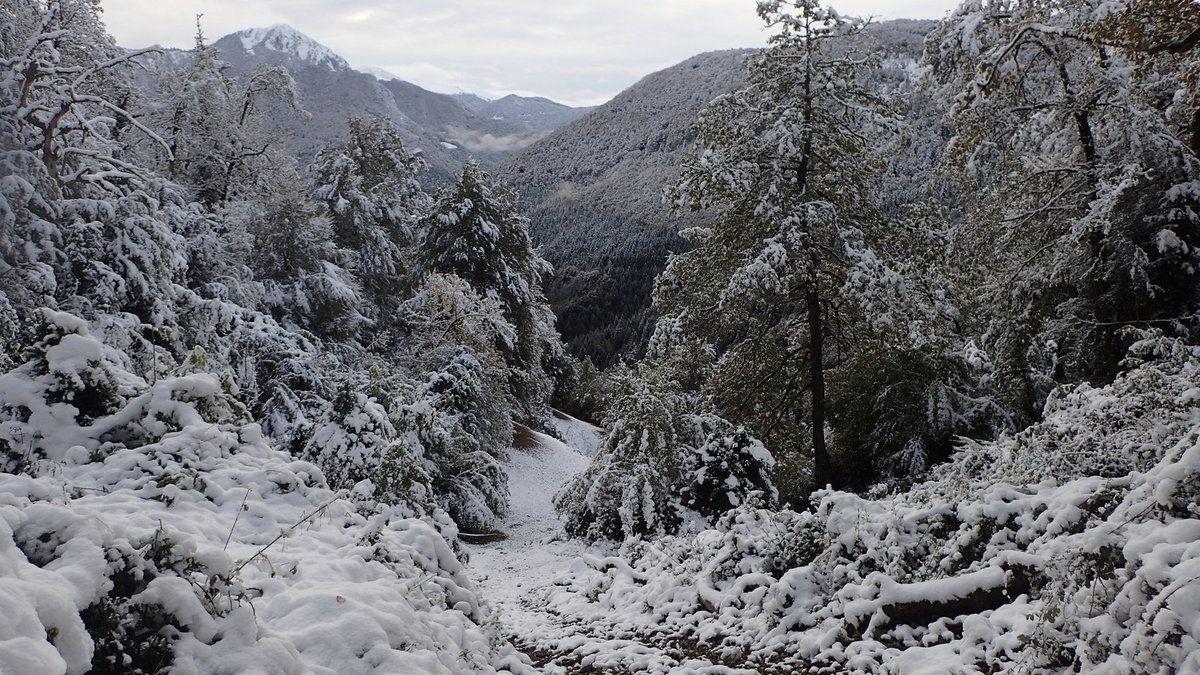 La premier neige de l'année, 29 octobre 2018