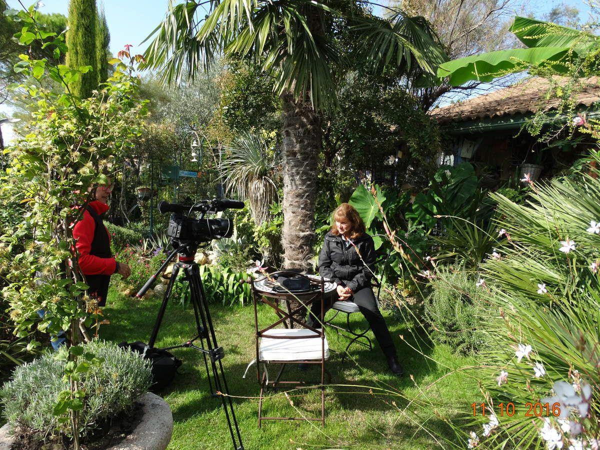 Reportage dans mon jardin mardi 11 octobre .....avec Isabelle Morand