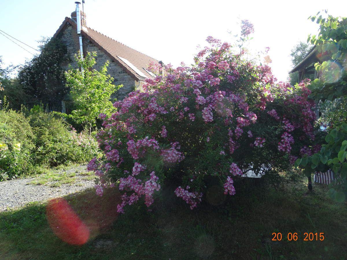 Voyage dans la Creuse (à suivre ...)Le jardin de Sauveterre