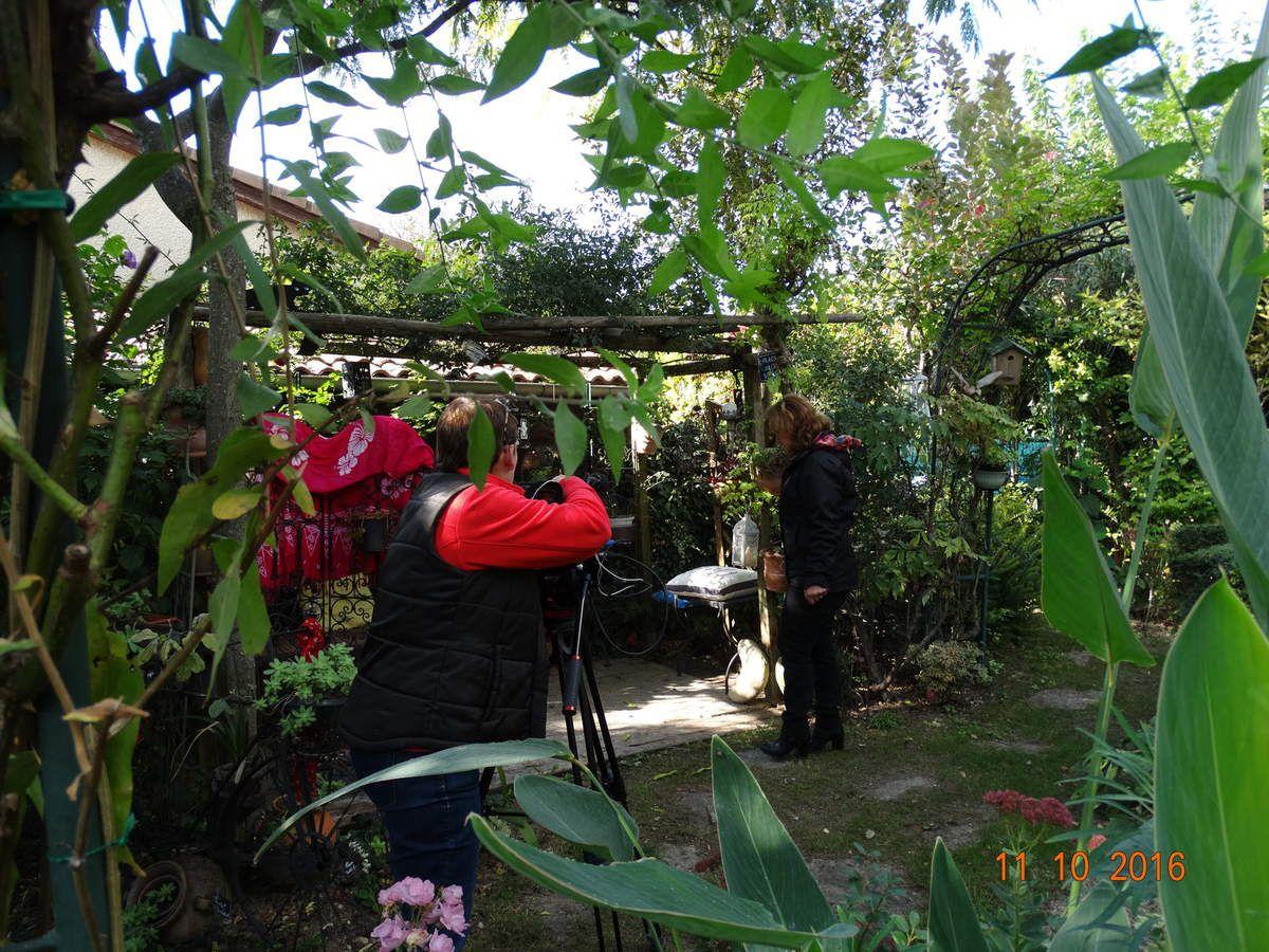 Reportage  dans mon petit jardin  réalisé par Isabelle Morand pour son magazine en ligne Hortus Focus, le jardin 360°