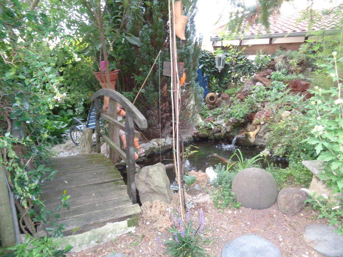 Toutes les photos ont été prises ce matin dans mon jardin