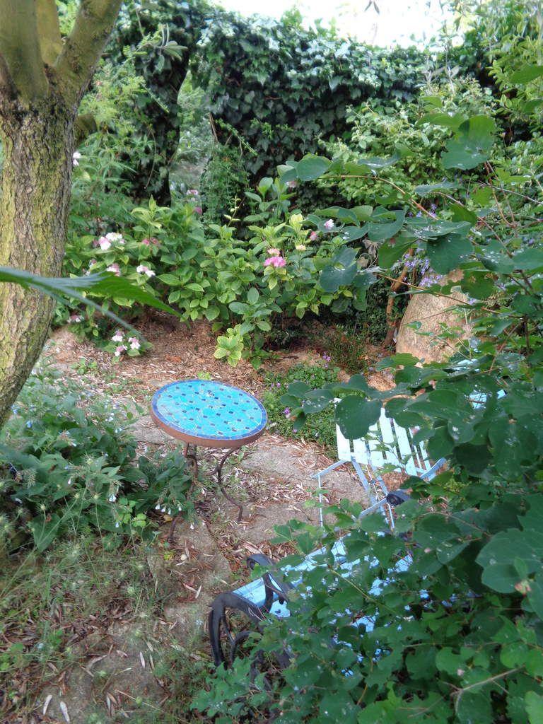 """""""Mon jardin bleu"""" au jardin """"Le Clos fleuri"""" à Chabeuil dans la Drôme"""