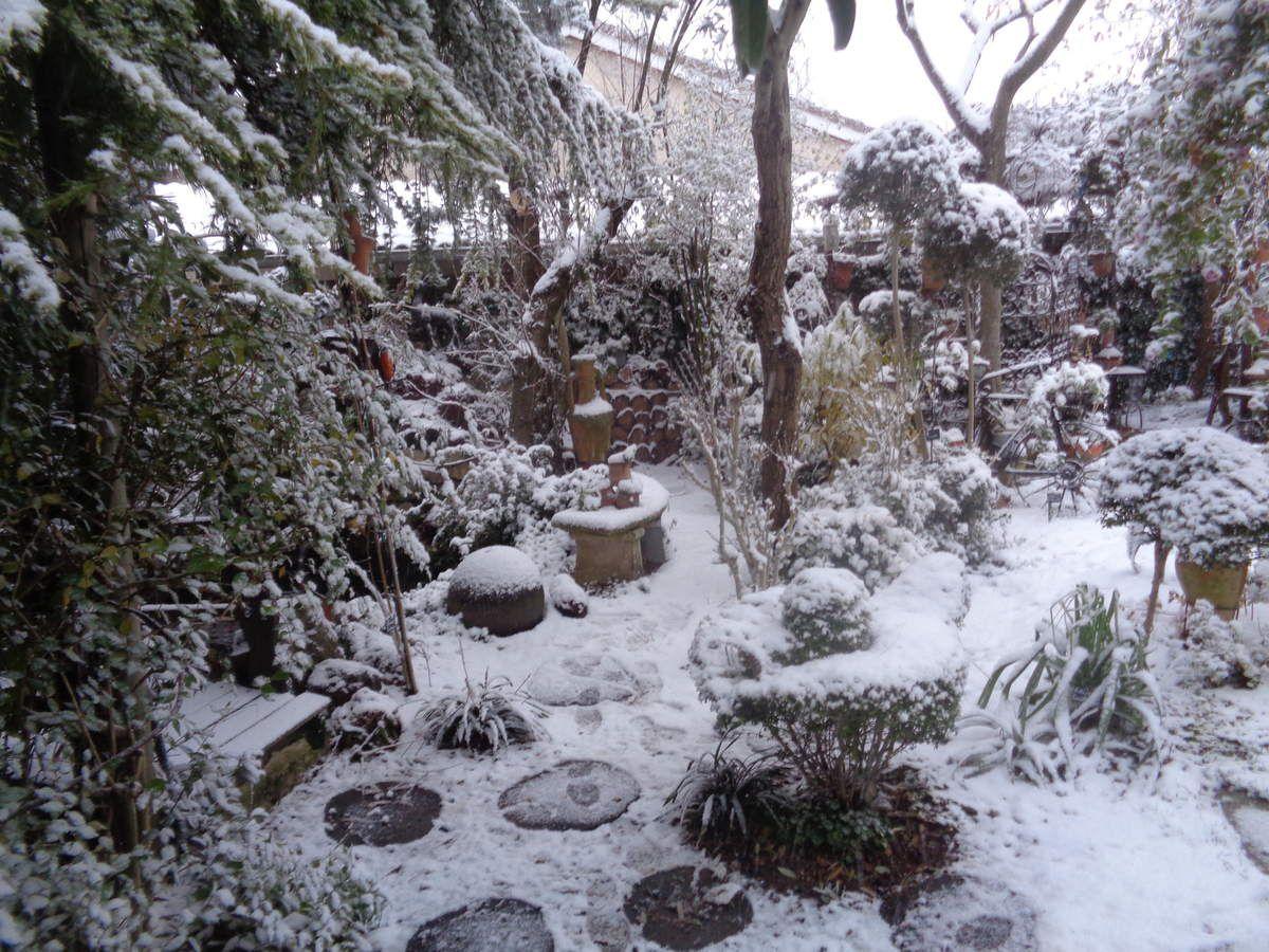 La belle neige blanche n'est pas une ennemie au jardin......