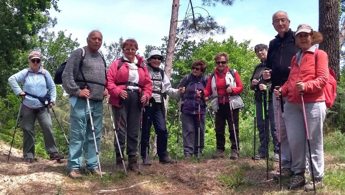 190509g5 = promenade en forêt de Seignosse